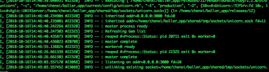 Mina Unicorn 部署Rails 应用, 遇到小问题,请教。 · Ruby China